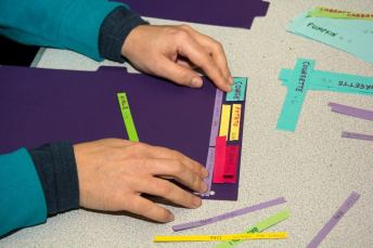 Arranging strips of paper on the paper plot