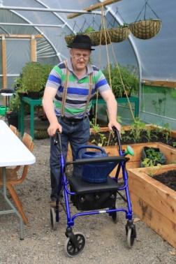 A man with a walking frame in the polytunnel