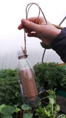 Plastic bottle on a string