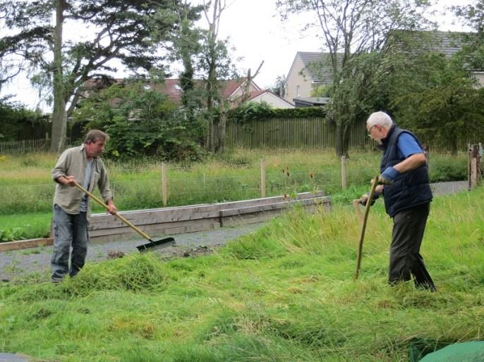 A photo of two men raking hay