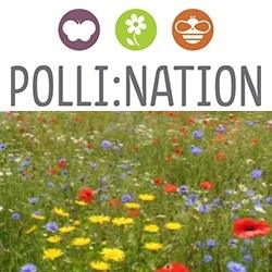 Polli:nation survey logo