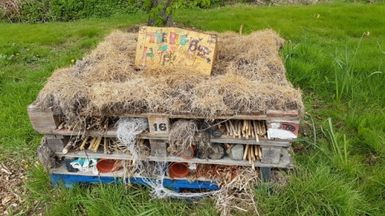 One of our bug hotels
