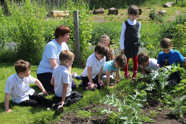 Children watching for pollinators at the Tayport Community Garden