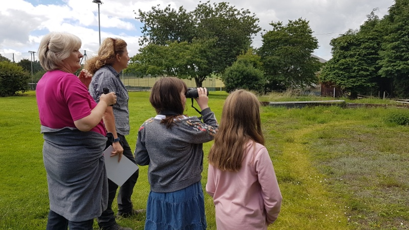Earth Explorers watching blackbirds and sparrows