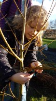 A photo of A girl weaving willow