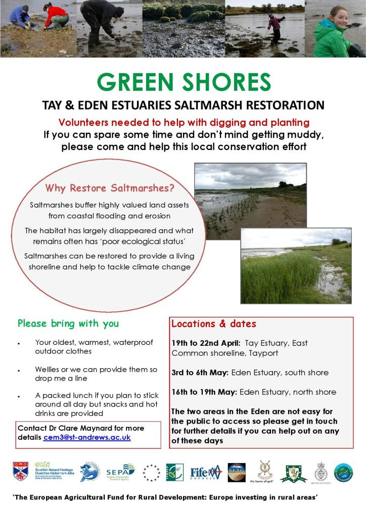 Saltmarsh restoration flyer