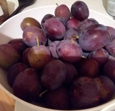 A photo of plums