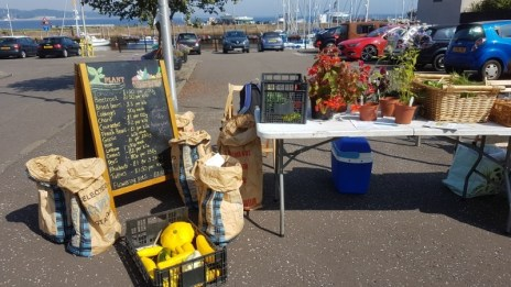 PLANT produce stall at the Tayport harbour