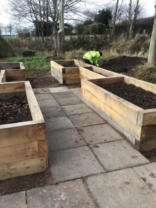 November garden update