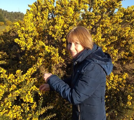 A photo of Kathleen picking gorse flowers