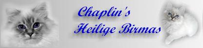 banner_chaplin1.jpg