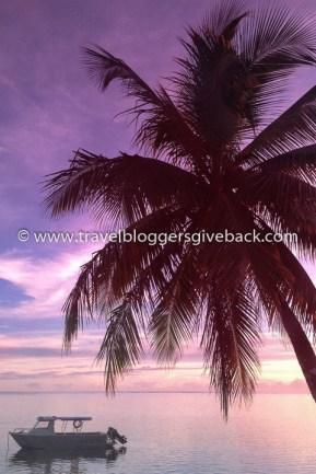05 - Fidzi Siveltimellä Fidzi: Palmut tuovat aina mieleeni loman ja lämmön. Niin myös tämä auringonlaskukuva, joka on otettu maailmanympärimatkaltamme Fidzin Coral Coastin rennoista tunnelmista. Myynnissä myös valmiina tauluna!