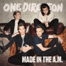 Image result for 1d made in the am