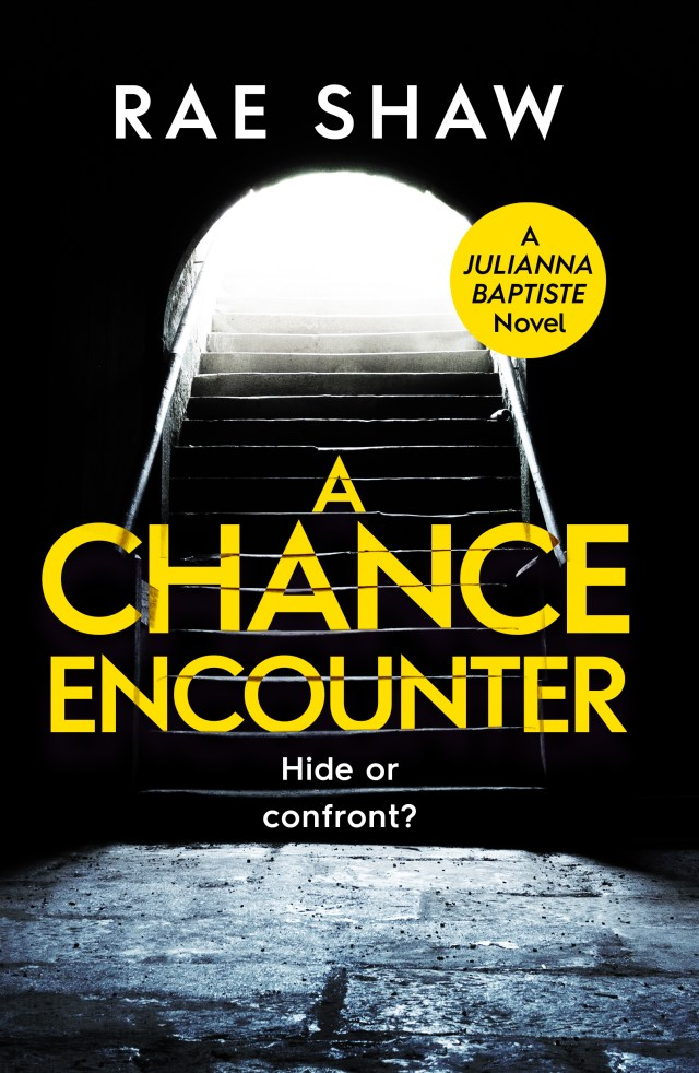 A Chance Encounter by Rae Shaw is a book you will not put down