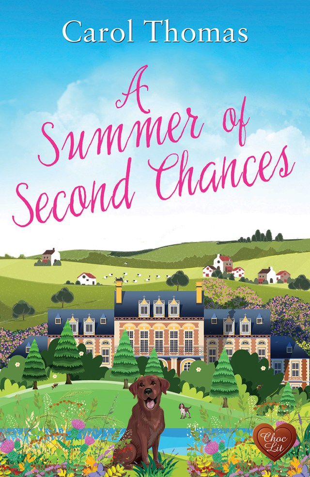 A Summer of Second Chances by Carol Thomas is a truly lovely read!