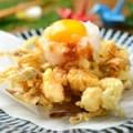 海老と野菜のかきあげタレ -卵黄のせ-