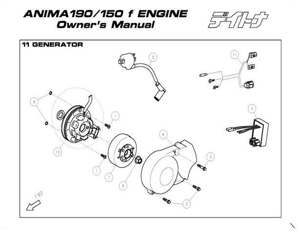 Daytona 150-190 4 Valve Anima Stator with Lighting #10
