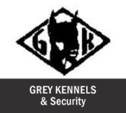 grey-kennel