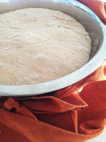 Risen dough_after 1 hour