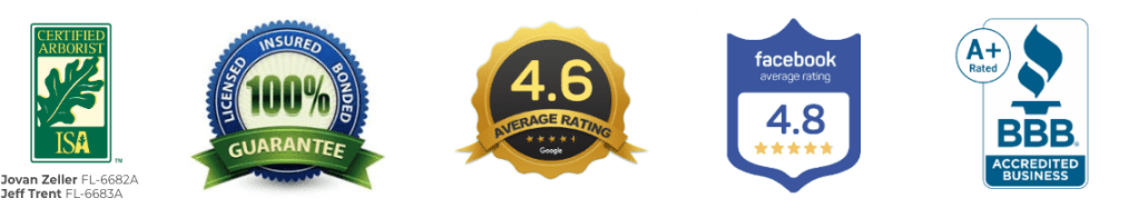 best tree service reviews badges from ISA, Google, Facebook and BBB