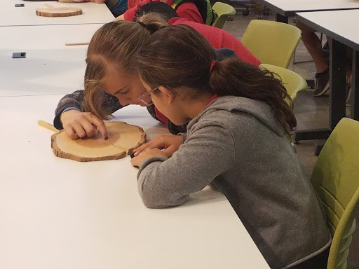TCDS students studying tree rings at the U of A