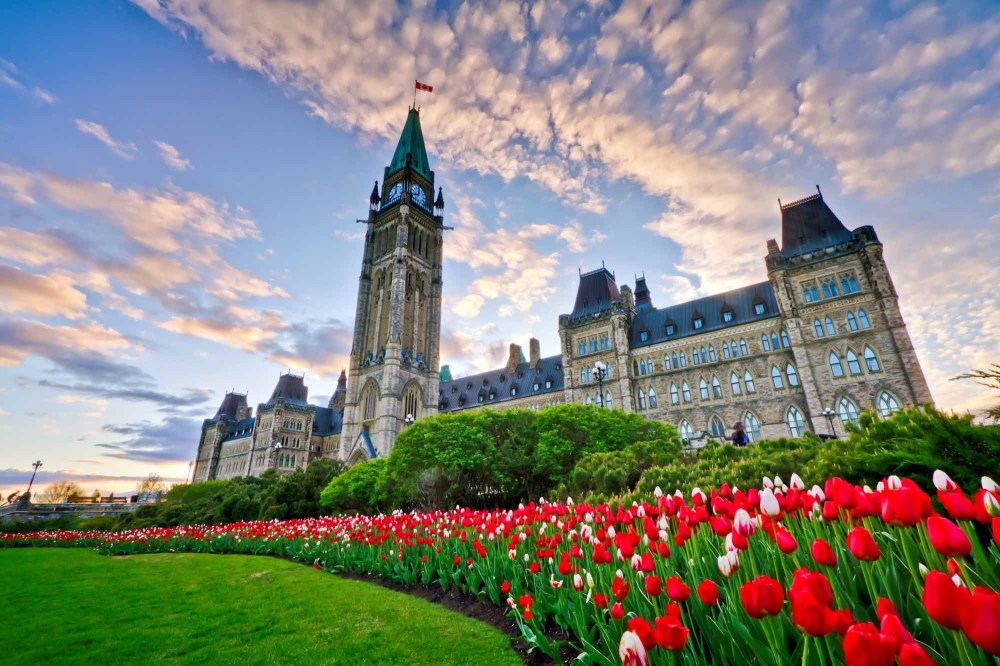 medium resolution of Resources for Grade 10: Civics and Citizenship (CHV2O)   The Canadian  Encyclopedia
