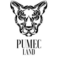 [PumeC Logo]