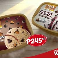 Top 5 Brands: Ice Cream Dealership in the Philippines