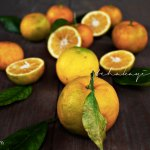 Sour oranges, key ingredient in Haiti's cooking. | tchakayiti.com