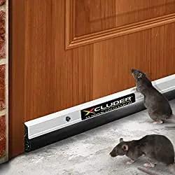 Commercial Pest Control door sweeps
