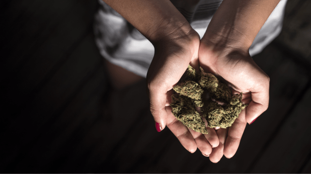 Keep Calm With These Cannabis Cultivars – Six Soothing Strains For Anxiety Patients