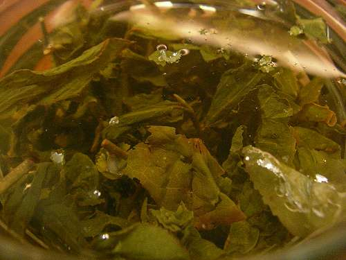 The art of reading the tea leaf
