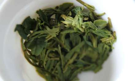 Dragon Well – The best and the worst of Chinese green tea