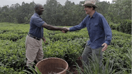 Davison shaking hands with Grayson in Tea field (1)