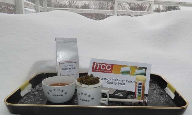 ITCC Explores Defective Tea