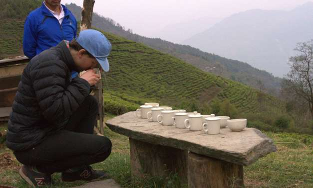 The tea industry is what you demand