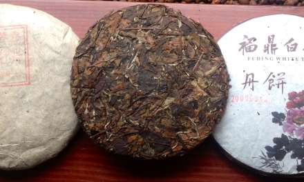 Three Years Medicine: Aged White Tea