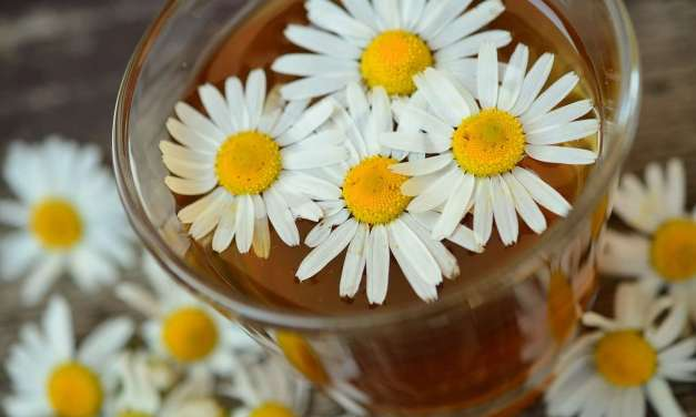 Blast From the Past: Tea Power: Help Your Skin Glow With These Amazing Tea Drinks