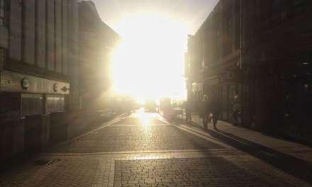 Green tea, skin health, and the sun