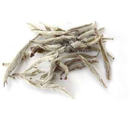 Why Buying a Silver Needle White Tea is Always a Risky Task