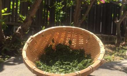 Wacky Uses For Tea Leaves
