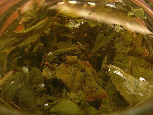 Blast From the Past: The art of reading the tea leaf