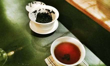 Pu'er-Like Teas From Southeast Asia – Part 1