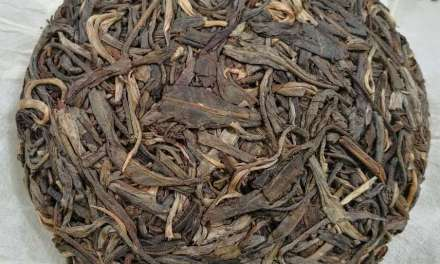 Pu'er-Like Teas From Southeast Asia – Part 3