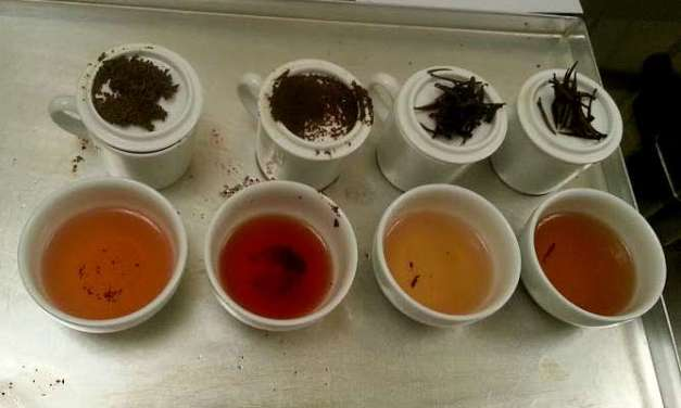Combined Tea Sample Tasting – Part 2