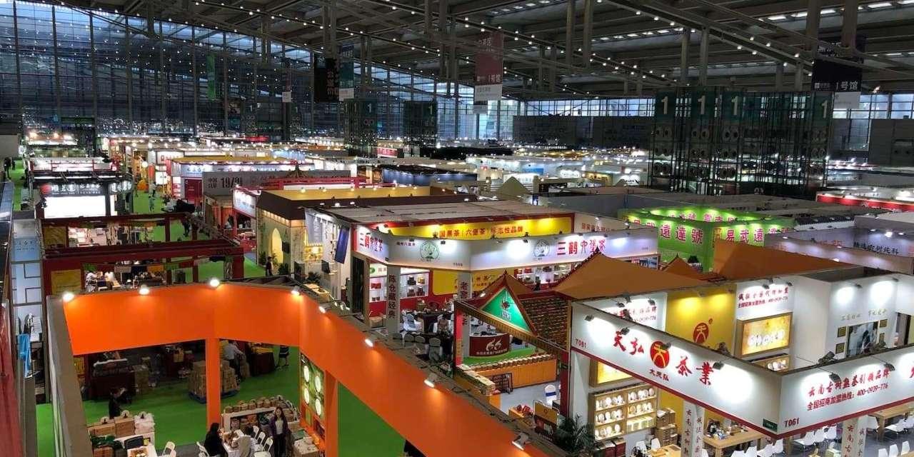 Shenzhen Series, Second Installment: The Shenzhen Global Tea Fair