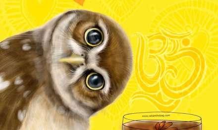 OWL WISDOM – Love and Tea