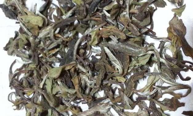 Tea Poetry: Rohini Exotic Emperor White