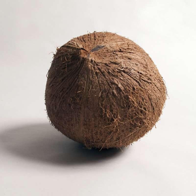 "That illusive ""perfect"" chai latte - A photo of a coconut"
