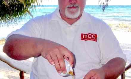 Tea, Training, and Tortugas